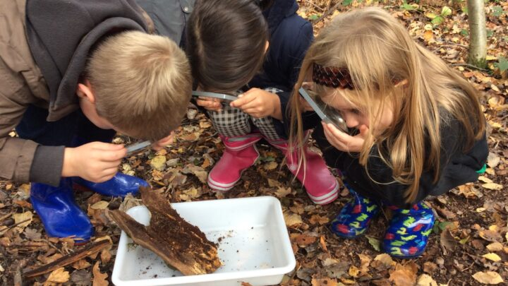 6 actions school systems can take to support children's outdoor learning